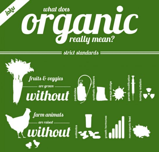 "What Does ""Organic"" Really Mean"