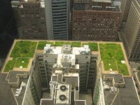 France Mandates Green Roofs For All New Commercial Construction