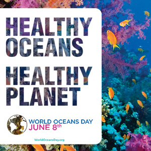 5 Ways Florida Celebrates World Oceans Day