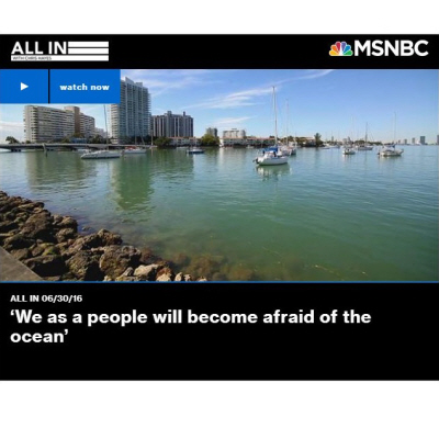 'We as a people will become afraid of the ocean'