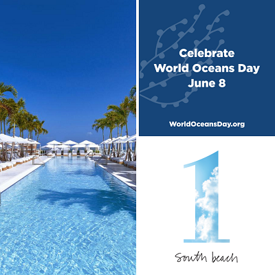 Celebrate 'World Oceans Day' 2019 Miami-Style