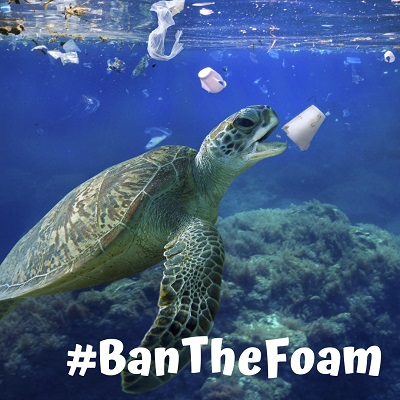 Coral Gables Styrofoam Ban Blocked by Florida Appeals Court