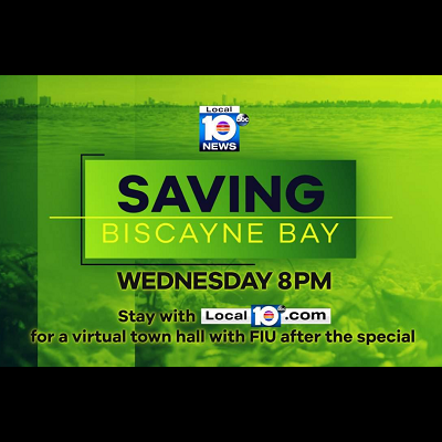 Saving Biscayne Bay
